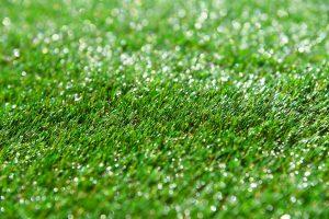 Glistening artificial grass
